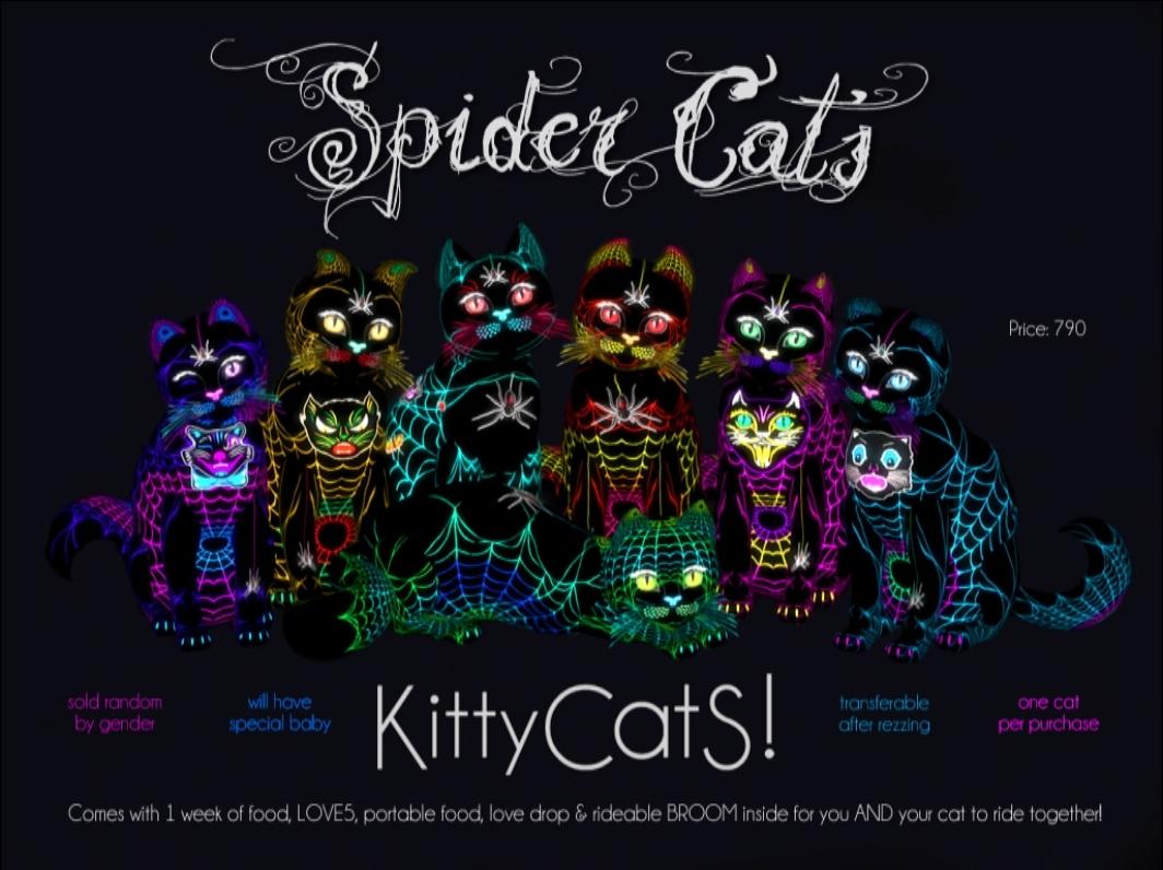[Image: spidercats.jpg]