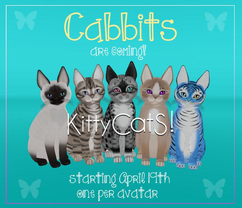 [Image: KittyCatS-CabbitS-AD.jpg]