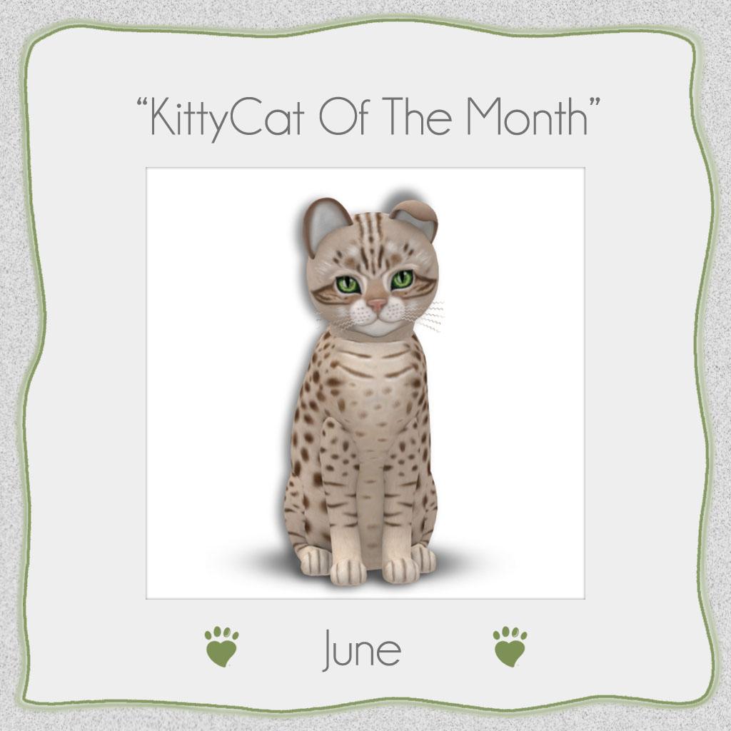 [Image: KittyCatS_KoTM_062019.jpg]