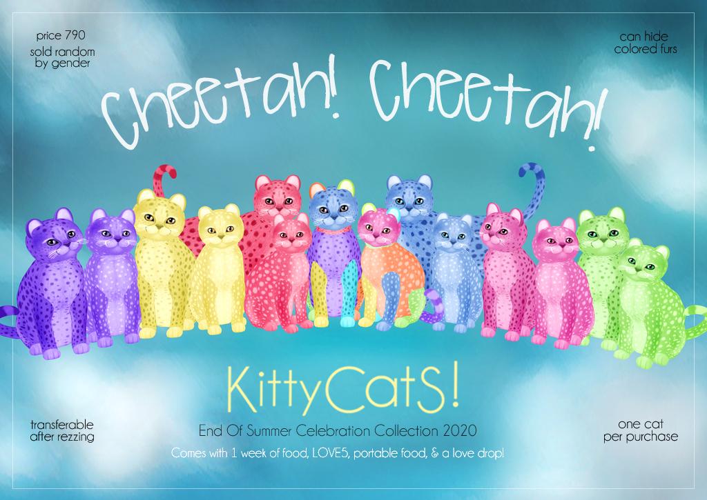 Cheetah_Cheetah_Ad_final