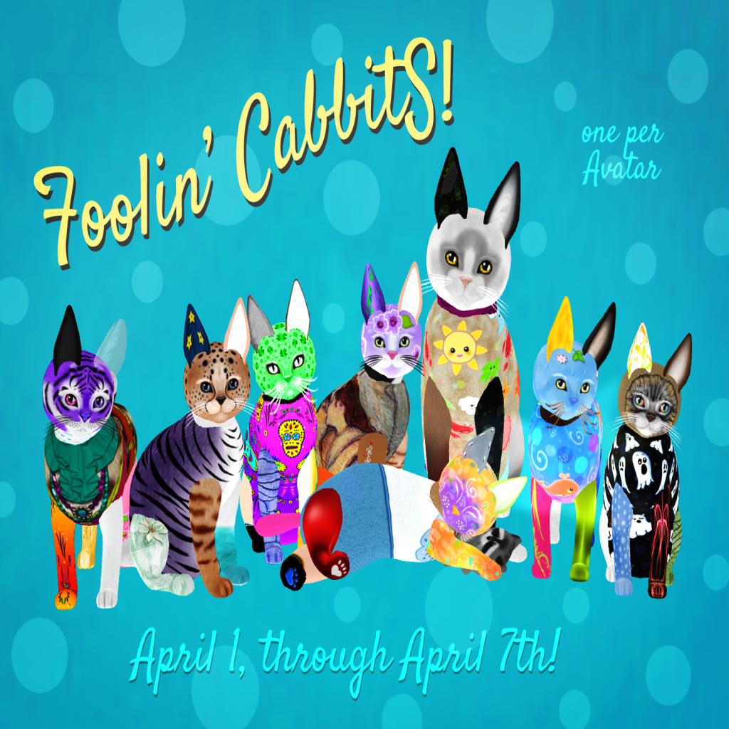 KittyCatS! - Foolin' CabbitS! are comin'
