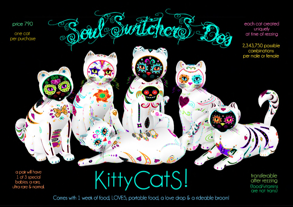 KittyCatS!-Soul-Switchers-Dos---Final-Ad